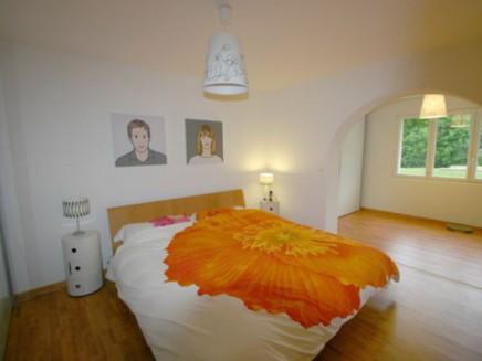 Large single villa in Founex