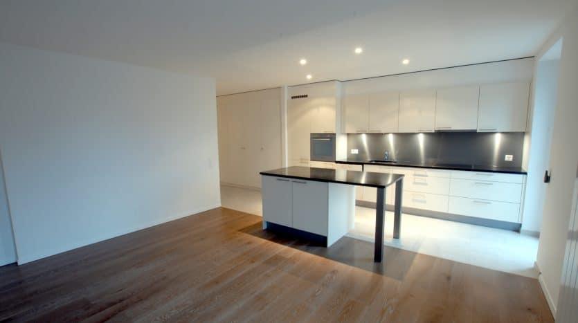 Grand appartement récent de 2 pièces à Crassier