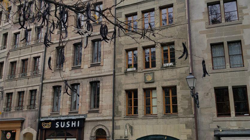 Charmant appartement meublé de 2 pièces en Vieille-Ville