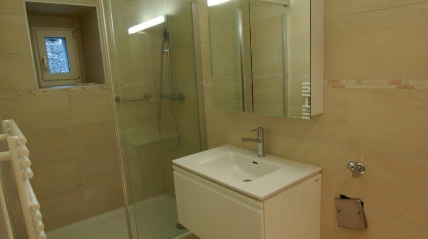 Grand appartement de 2 pièces à Crassier